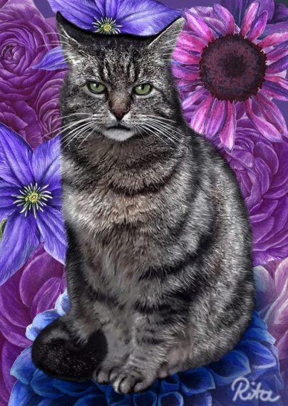 """Katzen-Portrait """"Mozart"""""""